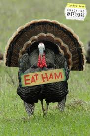 Turkey eat ham